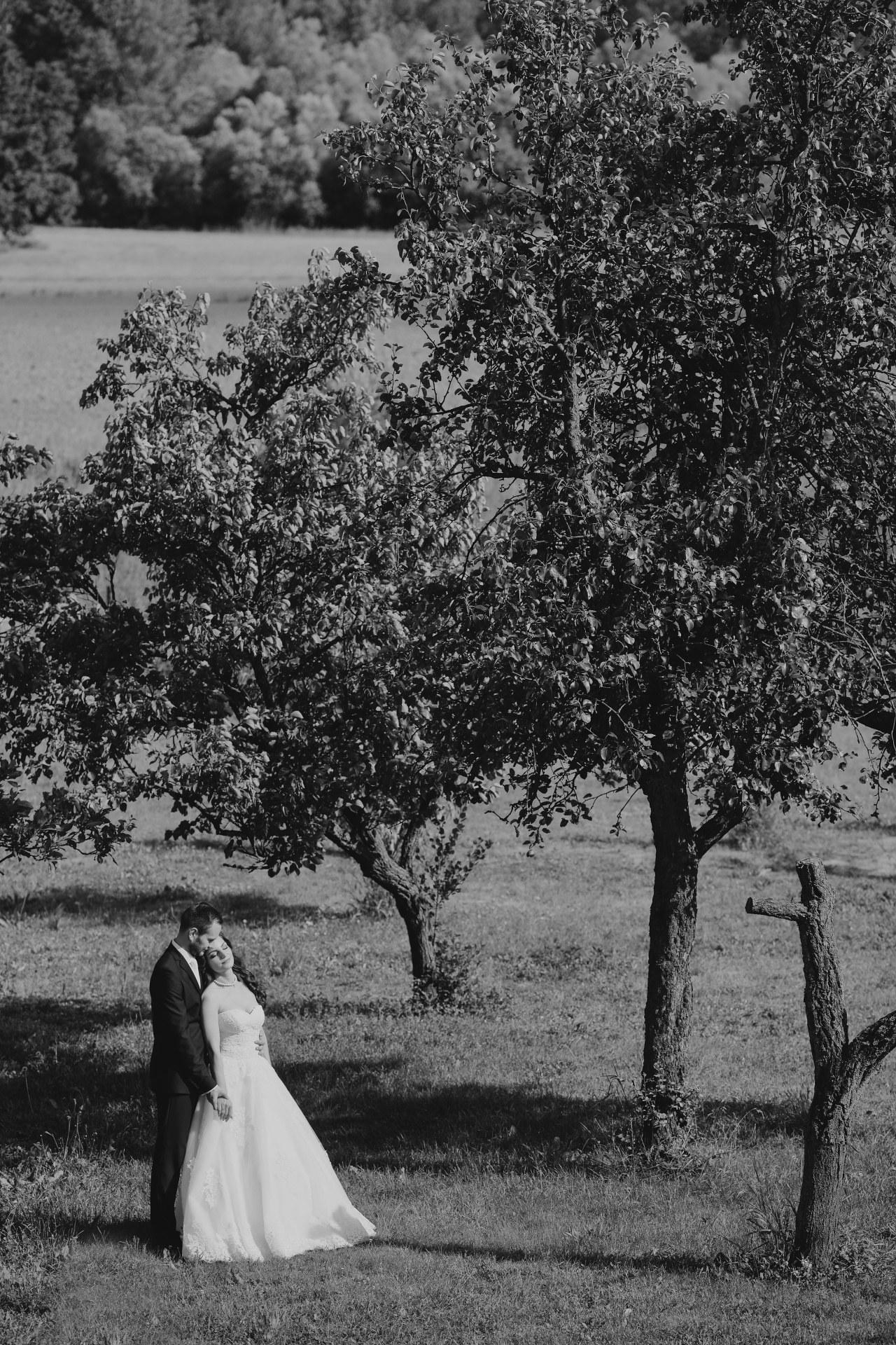 fotograf secovce